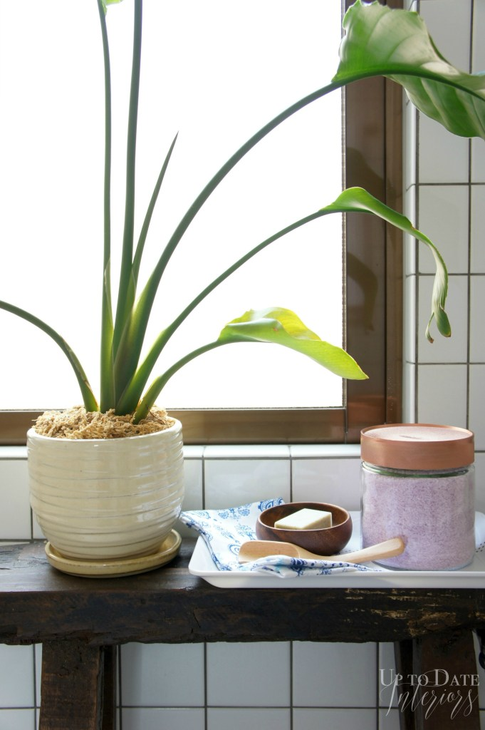 Up to Date Interiors - Okinawa House Tour potted plant