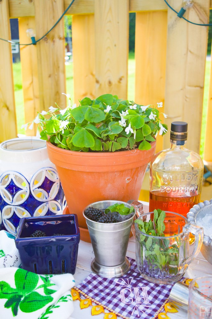 Make your own Blackberry Mint Julep and enjoy a twist on the classic summer drink, perfect for weekends, TGIFs, and any old excuse for a summer cocktail.