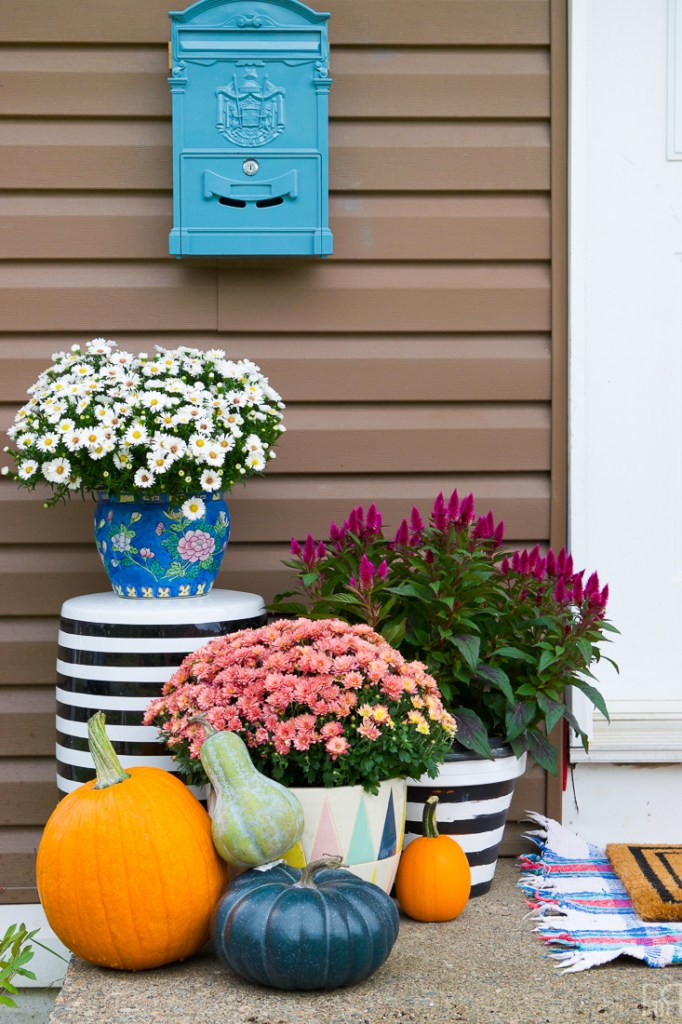 fall mums in purples and whites against brown house