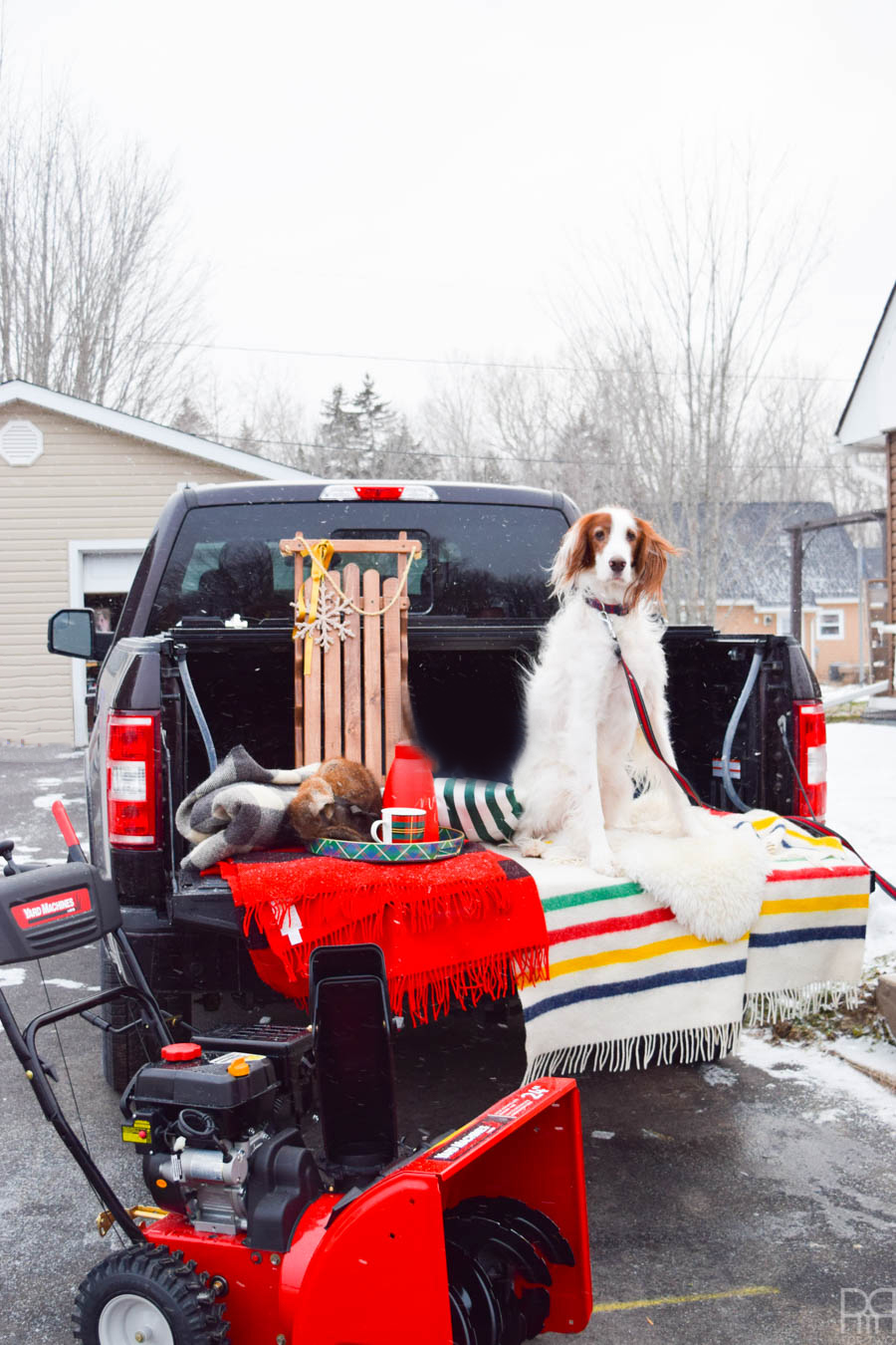 Conquer your winter blues and head outside to enjoy mother nature! You'll get to the business of enjoying the great outdoors so much faster when you've got a snowblower to help power through the ice and snow. Come see what I'm doing to enjoy the Winter