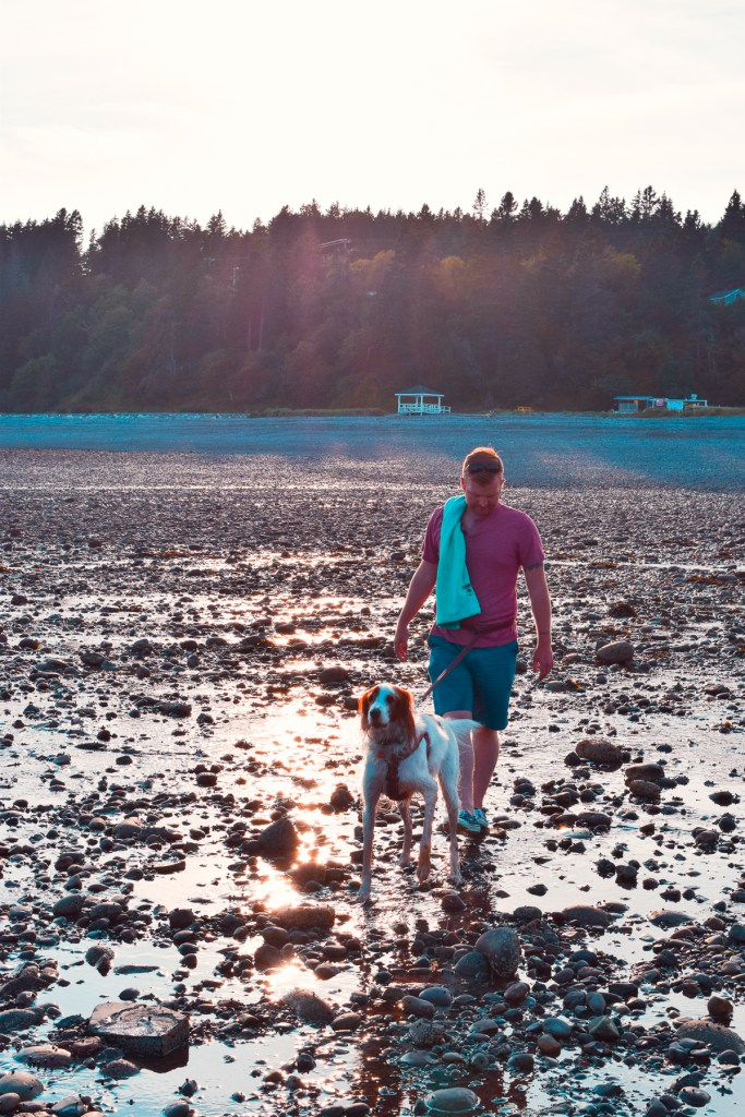 man and dog walking along shoreline