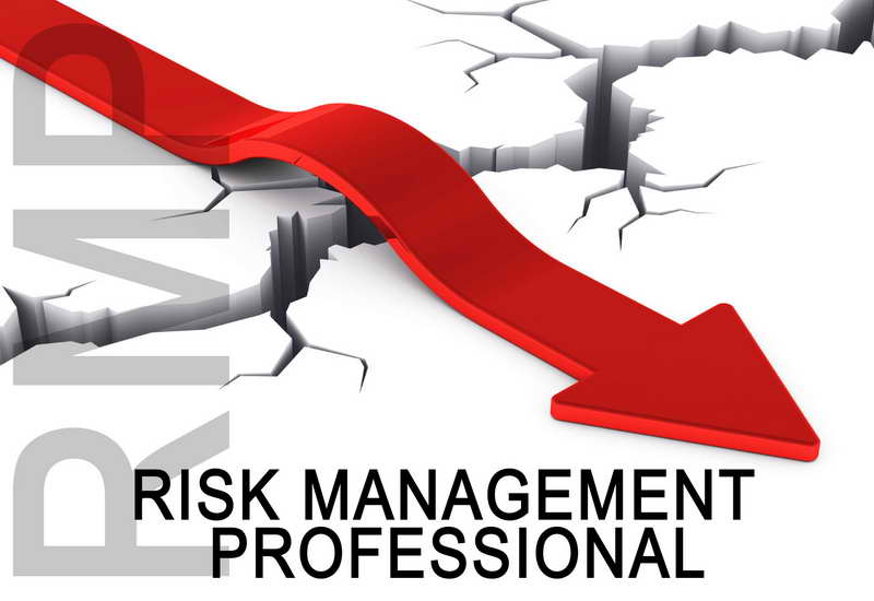 PMI- RMP Project Risk Management Professional Exam Prep
