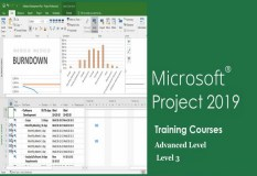 Advanced Microsoft Project Training Course. MS.Project 2019