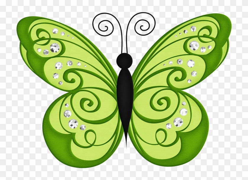 Butterfly Clip Art Butterfly Wallpaper Butterfly Transparent Background Green Butterfly Clipart Hd Png Download 730x530 5053088 Pngfind