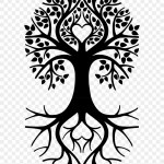 Tree Of Life Png Transparent Png 590x967 6506440 Pngfind