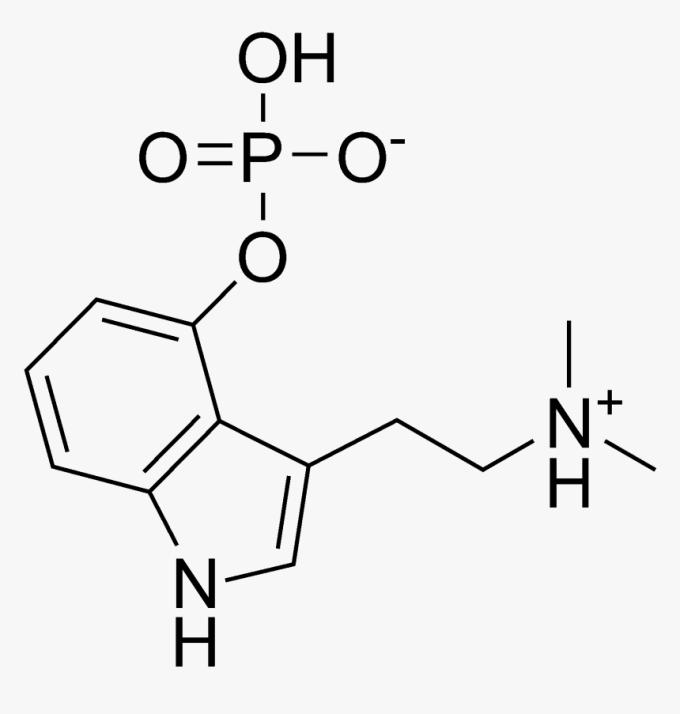 Psilocybin Chemical Structure 4 Aco Dmt Molecule Hd Png Download Transparent Png Image Pngitem