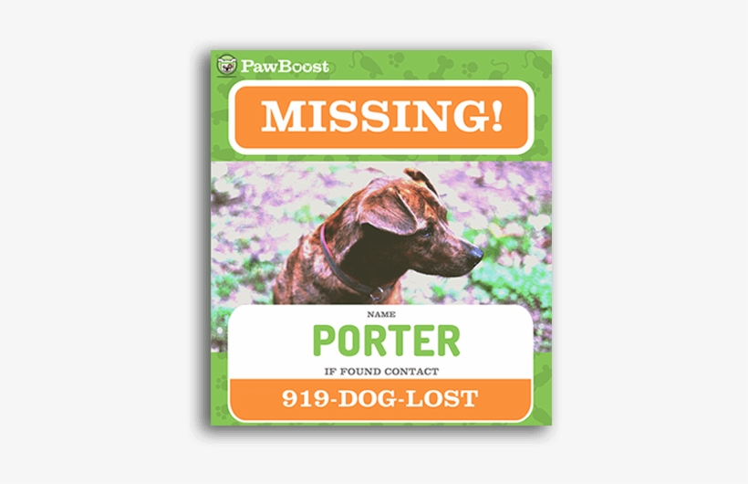 lost dog flyer template sign up for