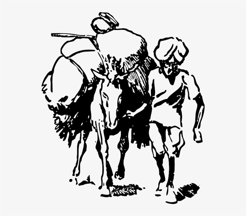 Cartoon Field Donkey Load Farmer India Indian Indian Farmer Clipart Black And White Free Transparent Png Download Pngkey