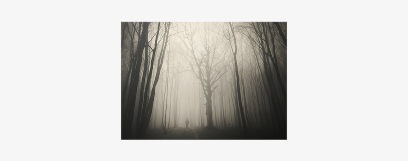 Check out our pine trees png selection for the very best in unique or custom,. Man Walking Past A Huge Old Tree In A Dark Spooky Forest Tree Free Transparent Png Download Pngkey