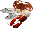 Download Seafood Png - Fish And Seafood Png PNG Image with No Background -  PNGkey.com