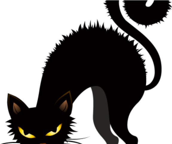 You can use them for … Download Black Cat Halloween Clipart Full Size Png Image Pngkit
