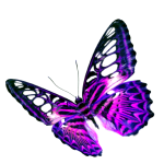 Purple Butterfly Transparent Background Png Mart