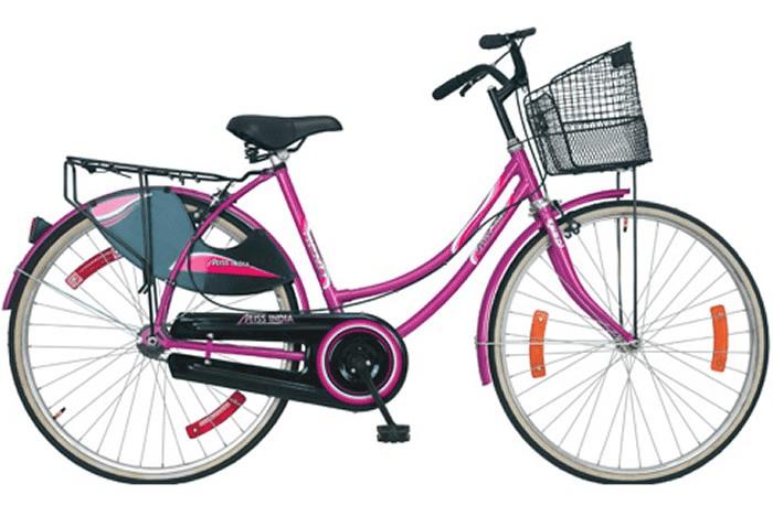 महोत्तरीका दुई स्थानीय तहले गरे ५०० बढी छात्रालाई साइकल वितरण