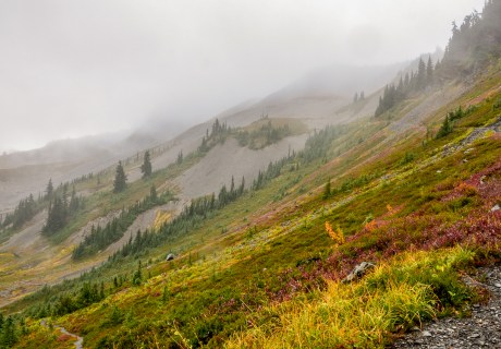 Hayden Pass Trail - Olympic National Park