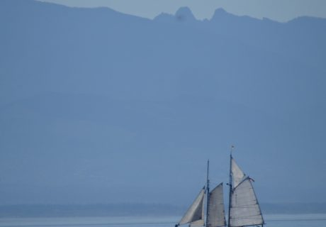 Sailboat in the Puget Sound