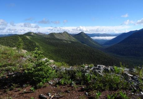 Whitefish Range, Flathead National Forest