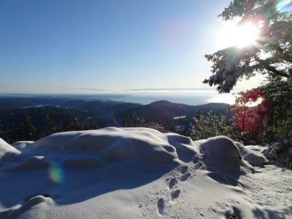Goose Rock Summit
