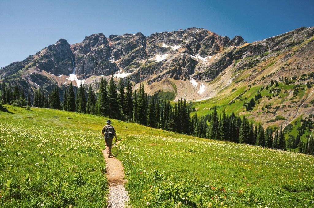 PNT-Pasayten-Wilderness