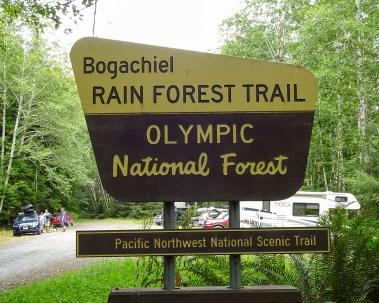 Bogachiel Trailhead Sign