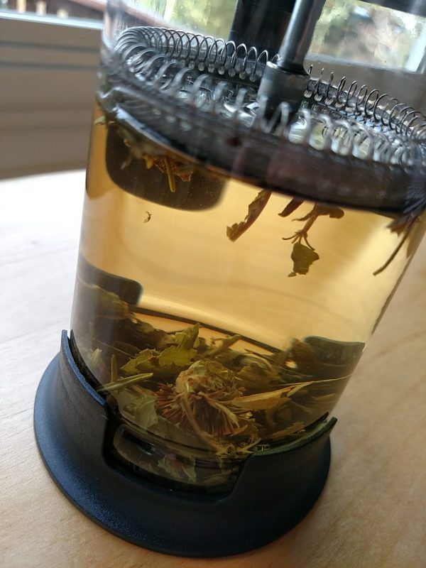 Cedar Leaf Tea