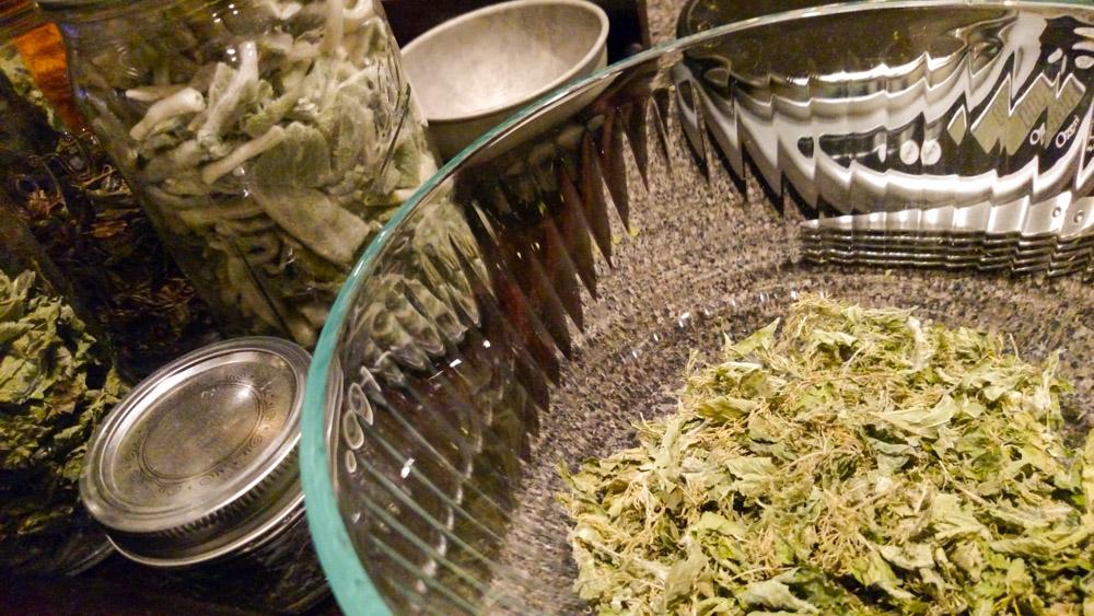 You can grow your own medicinal tea