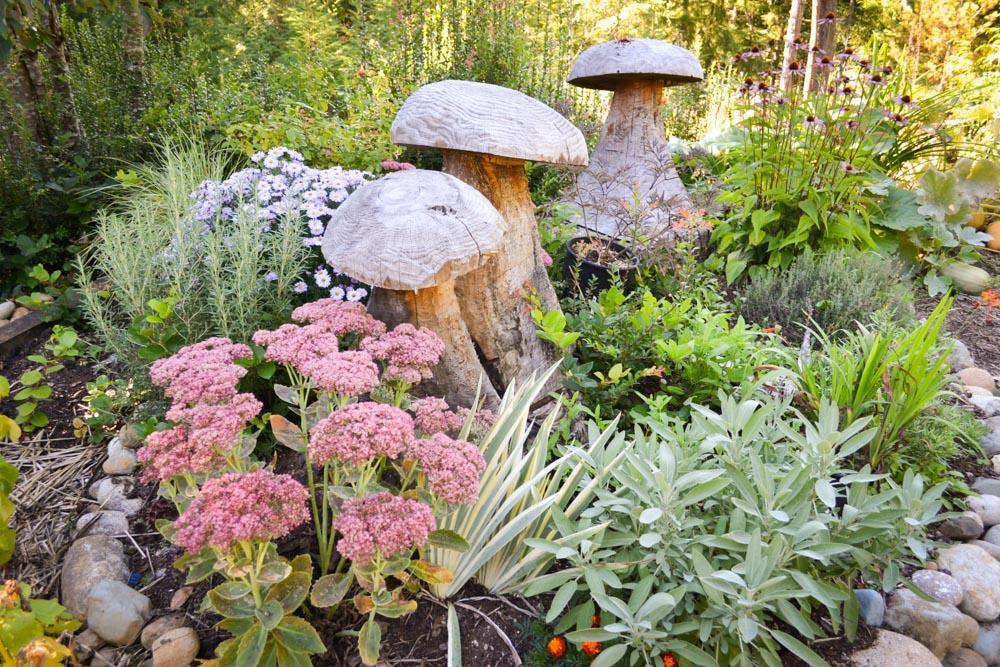 Rosemary for the PNW Medicinal Tea Garden