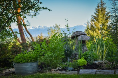 May in the PNWfromScratch Garden 2016_12