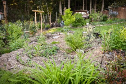 May in the PNWfromScratch Garden 2016_34