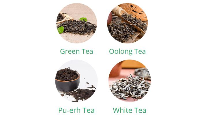 Kou Tea gnc