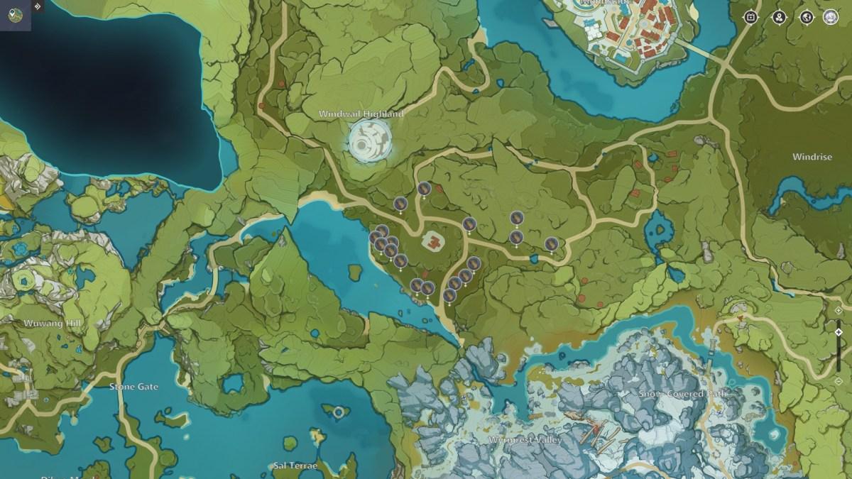 Cedar Tree Locations