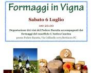 Formaggi in Vigna