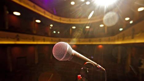 Audities opleiding Artiest