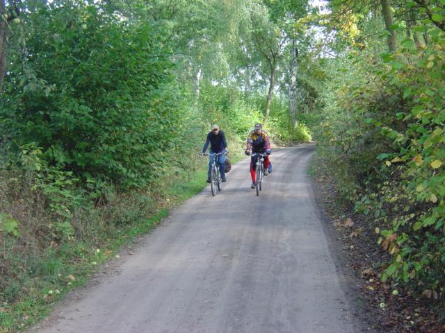 Pszczewski Park Krajobrazowy - gdzieś w drodze
