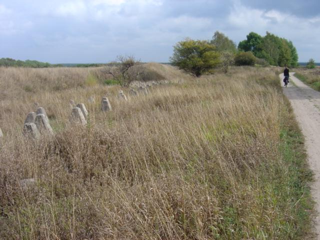 Pszczewski Park Krajobrazowy - w Międzyrzeckim Rejonie Umocnionym