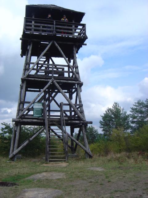 Pszczewski Park Krajobrazowy - wieża obserwacyjna w Kęszycy