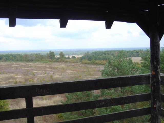 Pszczewski Park Krajobrazowy - Widok z wieży widokowej koło Kęszycy (Międzyrzecki Rejon Umocniony)