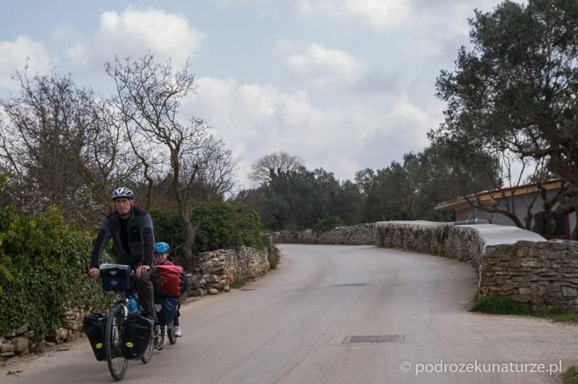 Charakterystyczne kamienne murki można spotkać praktycznie w każdej części Istrii