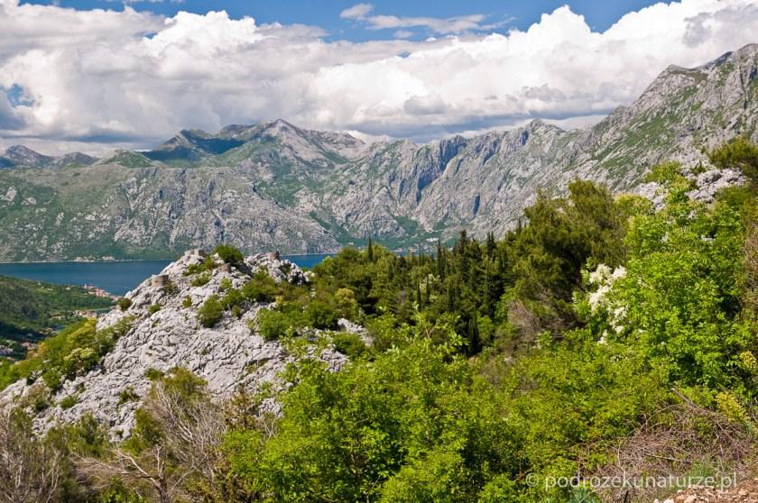 Zaczynają się też widoki na Zatokę Kotorską