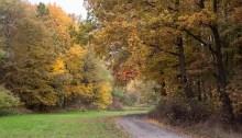 Magia jesieni w pełni...