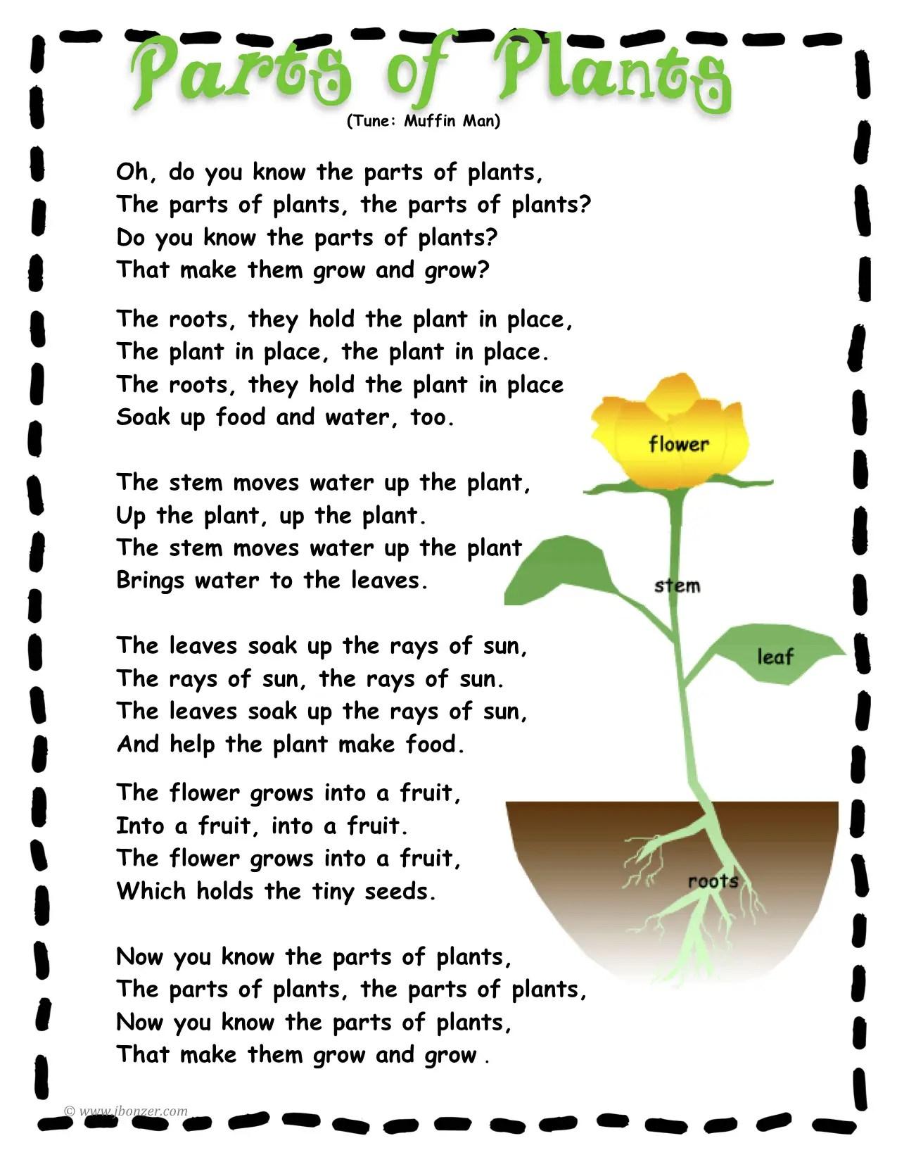 Plants Poems
