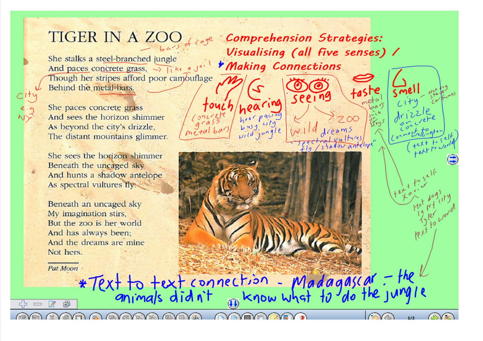 Zoo Poems