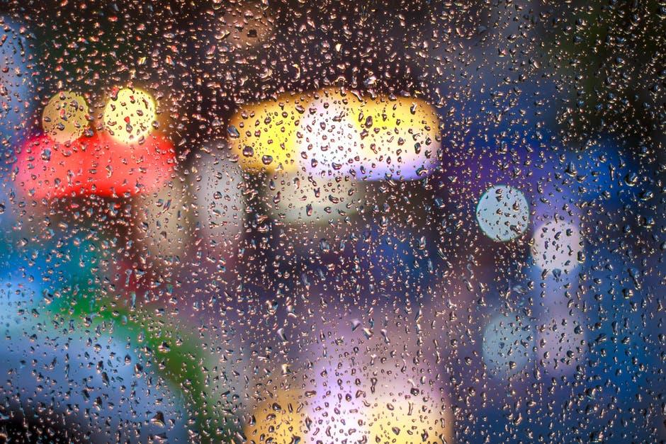 Rain bird | Rain poetry | Rain dove | Rain poems | Famous poetry