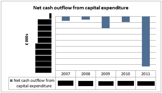 Chart 9: Net cash outflow from capital expenditure. © Gil Dekel.