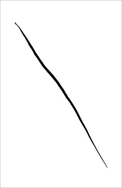 Portrait of a line, Ink 1 - © Gil-Dekel