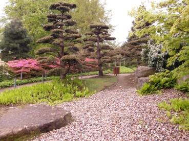 japanese-garden-3