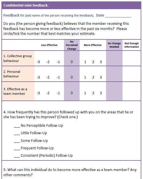 team building process- confidential mini feedback