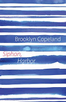 book cover siphon harbor