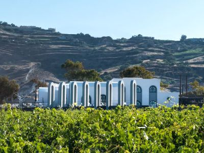 Santorini wines | Wines of Santorini | Santorini wine tours | Santorini Santo wines | Santorini vineyard | Santorini Greek wine