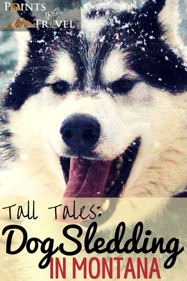 Bigfork Basecamp, Montana, Tall Tales: Dog Sledding in Montana