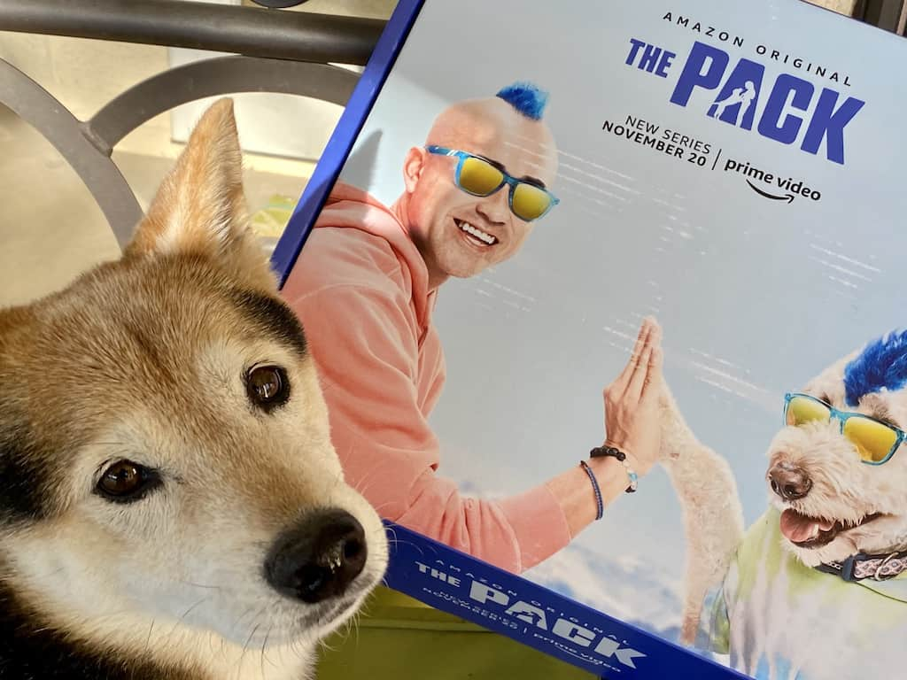 """""""The Pack"""" - Amazon Video Series"""
